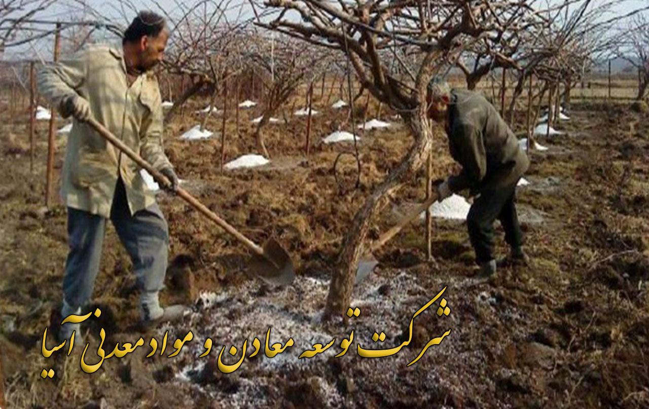 پرلیت ویژه باغبانی و درخت کاری کاهش میزان مصرف آب افزایش سبکی خاک