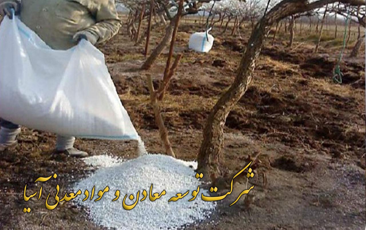 پرلیت درختکاری ویژه پرورش نهال درخت جلوگیری از خشکسالی نگهداشت آبی آبیاری قطره ای خاک پرلیت