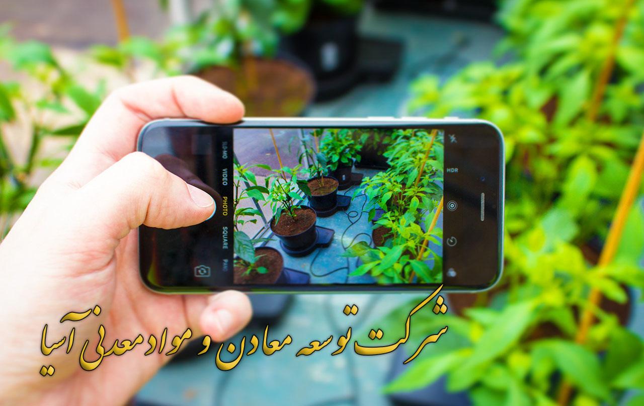 پرلیت کوکوپیت پیت ماس ورمیکولیت کاشت گیاه گلدان گلخانه فروش پرلیت کوکوپیت