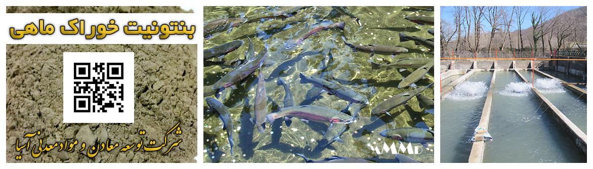 بنتونیت خوراک ماهی جیره غذایی پلت مواد غذایی ماهی پرورشی پلیت بنتونیت خوراک