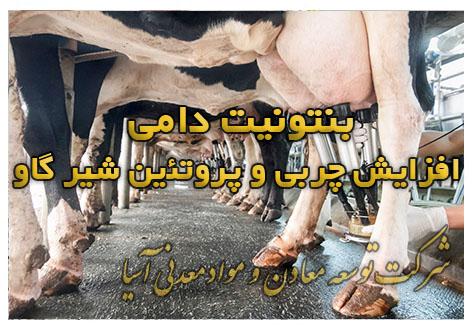 بنتونیت دامی غذا گاو و بز و دام برای افزایش چربی و پروتیئن شیر