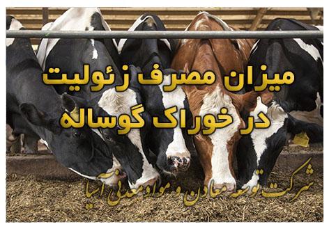 میزان مصرف زئولیت در غذای گاو گوسفند و دام و طیور جیره غذایی مکمل غذایی زئولیت زیولیت خوراک پودری دام