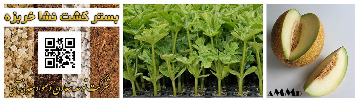 راهنمای نشا خربزه در سیستم کشت هیدروپونیک خربزه نشا کاری پرورش میوه طالبی هندوانه گلخانه ای پرلیت ورمیکولیت کوکوپیت پیت ماس