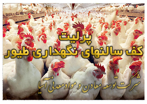پرلیت کف سالنهای نگهداری طیور دام مرغداری کف سالنهای مرغداری خاک کف مرغداری زئولیت و پرلیت کود مرغی