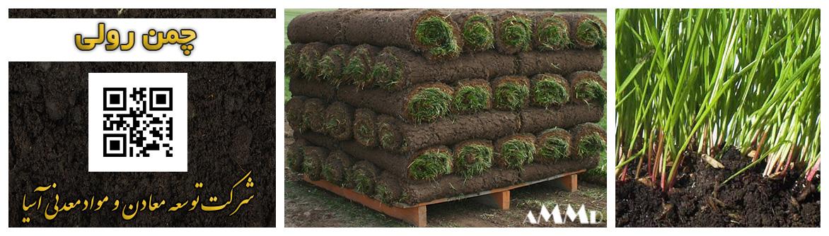 چمن رولی چمن قطعه ای زمین چمن طبیعی خاک پیت ماس تولید چمن ورزشگاه روف گاردن چمن سبز فروش پیت ماس سیلیس