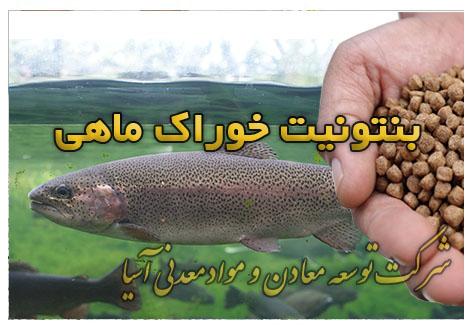 بنتونیت خوراک ماهی تولید پلت قزل آلا رنگین کمان تولید پلیت ماهی جیره غذایی ماهی و ابزیان پرورش میگو