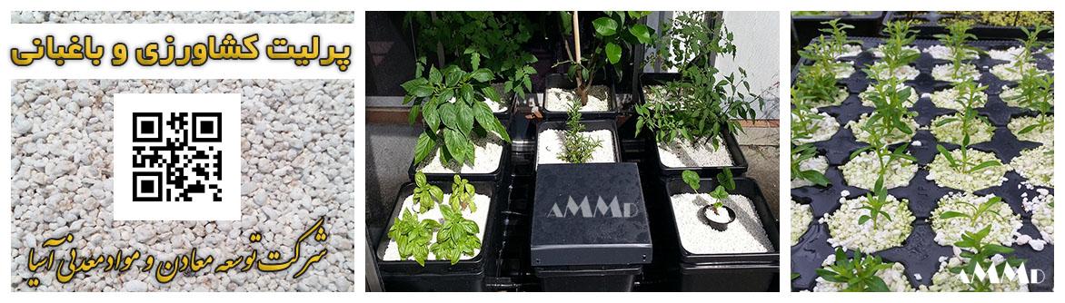 پرلیت کشاورزی باغبانی قلمه نشا گلخانه خاک پرلیت