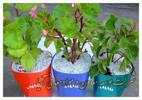 پرلیت کشاورزی باغبانی گلخانه قلمه نشاکاری خاک سبک پرلیت منبسط شده هیدروپونیک خاک