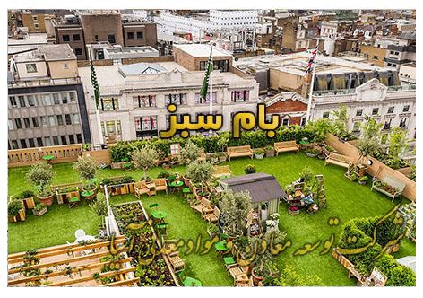 پشت بام سبز roof garden بسترهای کشت پرلیت، ورمیکولیت، کوکوپیت و پیت ماس ویژه احداث بام سبز گیاه روف گاردن