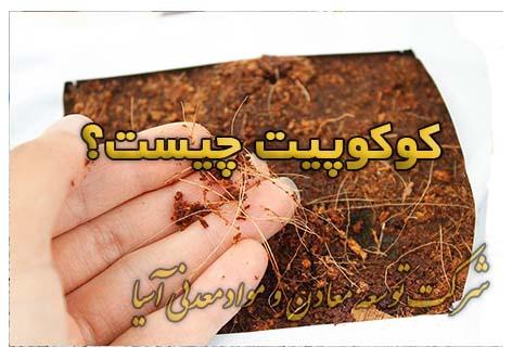 کوکوپیت چیست؟ بستر کشت پرلیت قیمت کوکوپیت خرید کوکوپیت گلخانه قلمه نشا درخت و نهال کشت هیدروپونیک گروبگ کوکوپیت هندی سریلانکایی الیاف نارگیل
