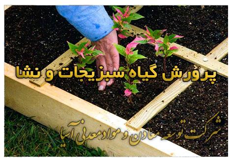 پرلیت پرورش گیاه، سبزیجات و نشا خاک ویژه نشا و قلمه انواع گل و گیاه و بذر کشت هیدروپونیک کشت بدون خاک پرلیت ورمیکولیت کوکوپیت و پیت ماس
